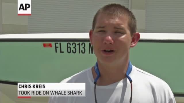 News video: Fla. Teen Catches Ride With Whale Shark
